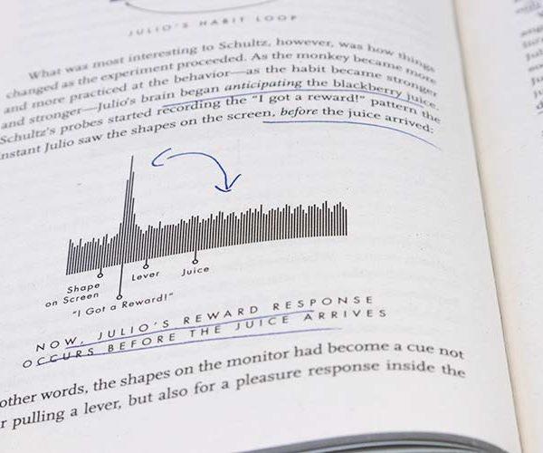 Voorbeeldpagina van boek The Habit Loop