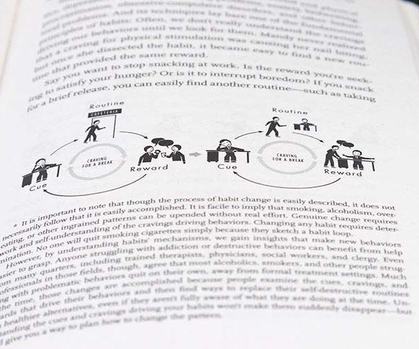 Inkijkvoorbeeld van het boek The Habit Loop